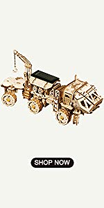3d wooden mechanical puzzle