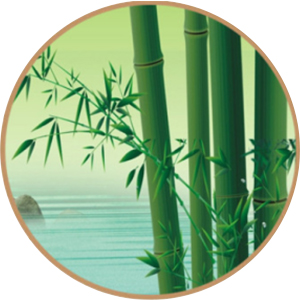 diabetic bamboo socks