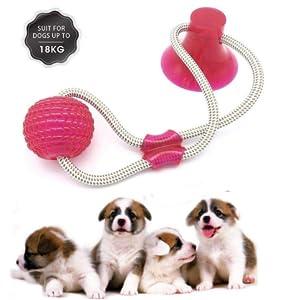 Pet Molar Bite Toy mit Saugnapf Interaktives Hundespielzeug Dog Interactive Molar kauspielzeug