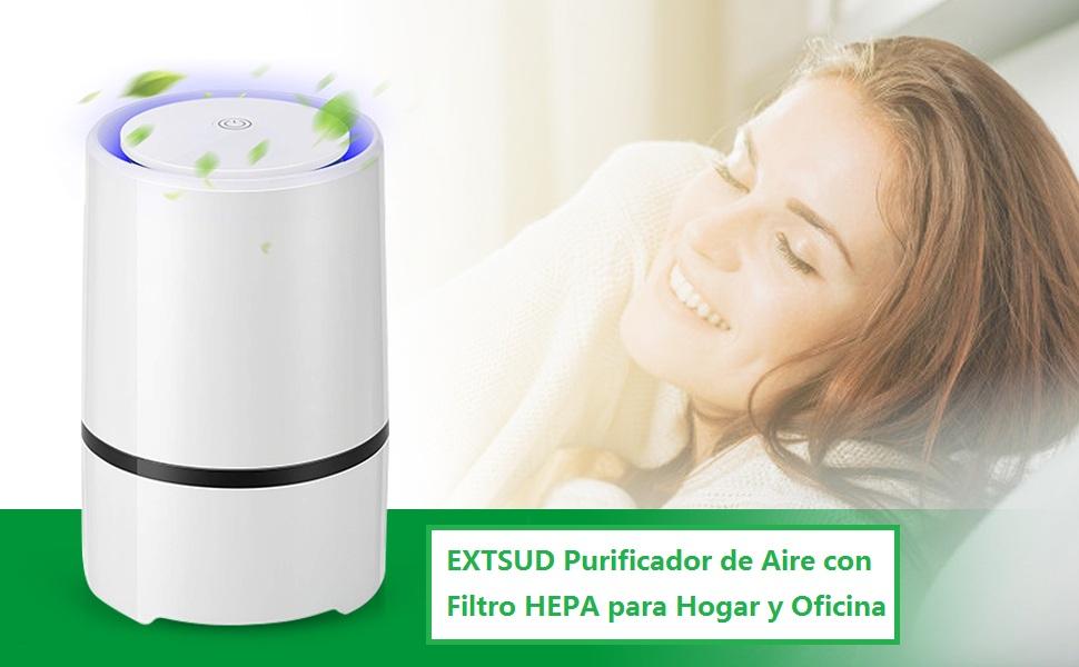 EXTSUD Purificador de Aire con Filtro HEPA para Hogar y Oficina ...