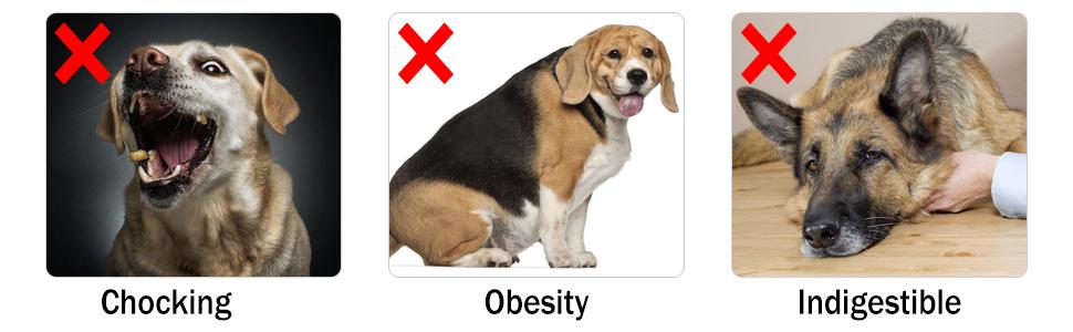 prevent chocking/obesity slow feeder dog bowls