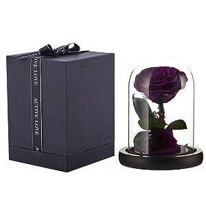 preserved rose purple