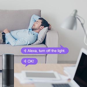 NiteBird Smart Light Bulb Works with Alexa Google Home A19 E26 WiFi Dimmable LED Lights Bulbs