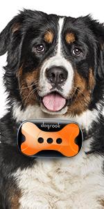 bark collar, rechargeable bark collar