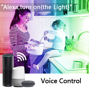 Alexa led strip light