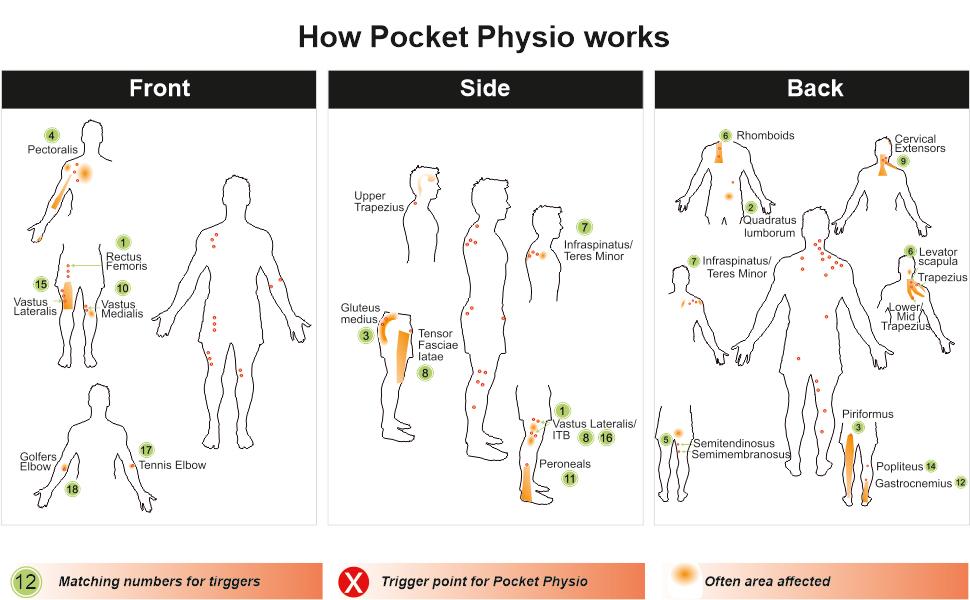 LOCKEROOM Pocket Physio MAX