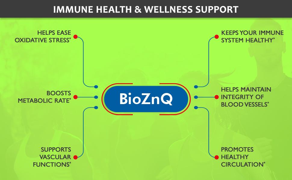 Wellness Support