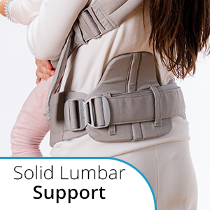 Solid lumbar support
