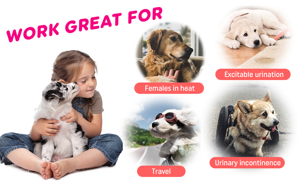 Dono Disposable Pet Diapers for Female