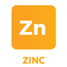 Vitamin C & Zinc Supplement combo for Immune System Support