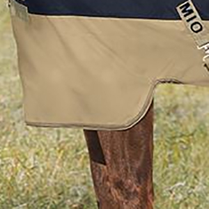 Cropped image showing the patented front leg arch of the turnout