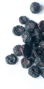 dried blueberries, food to live