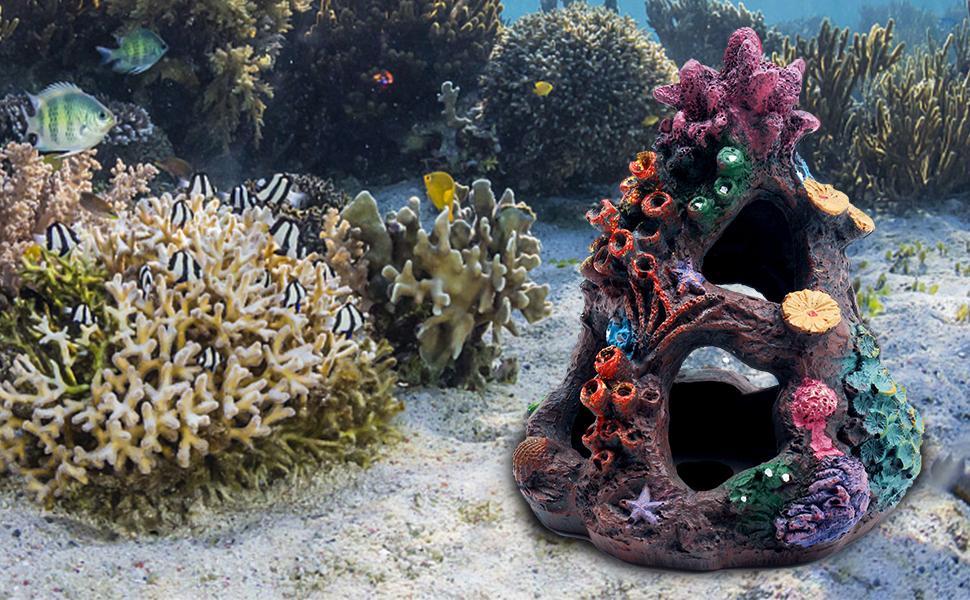 coral decoration