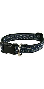 perro, collar, caminar, patrón, azul