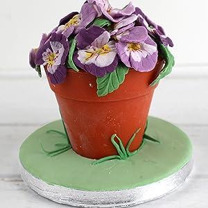 Pansy Plant Pot Cake