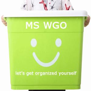 MS WGO