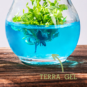 terra gel nourishment plant food