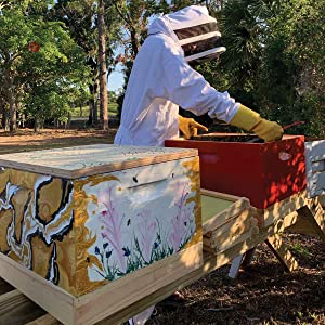 natural beekeeping for propolis throat spray