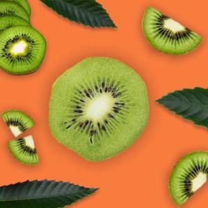 kiwi seed