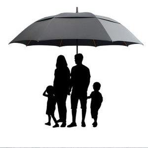 The large umbrella