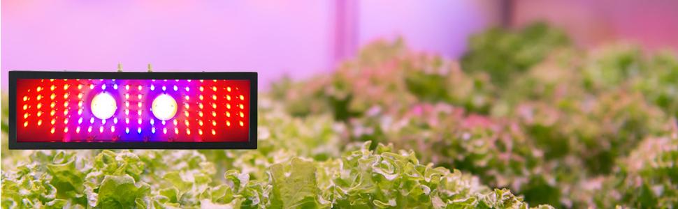 2000W led plant grow light, led growing light, led grow lights for indoor plants, plant grow lamps