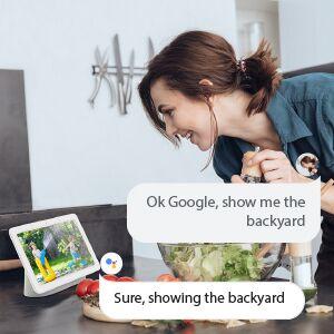 Google asistance