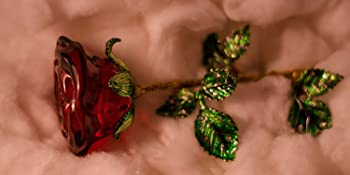 Love Rose Gift Girlfriend Woman Mother Birthday