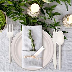 dispossable plates set