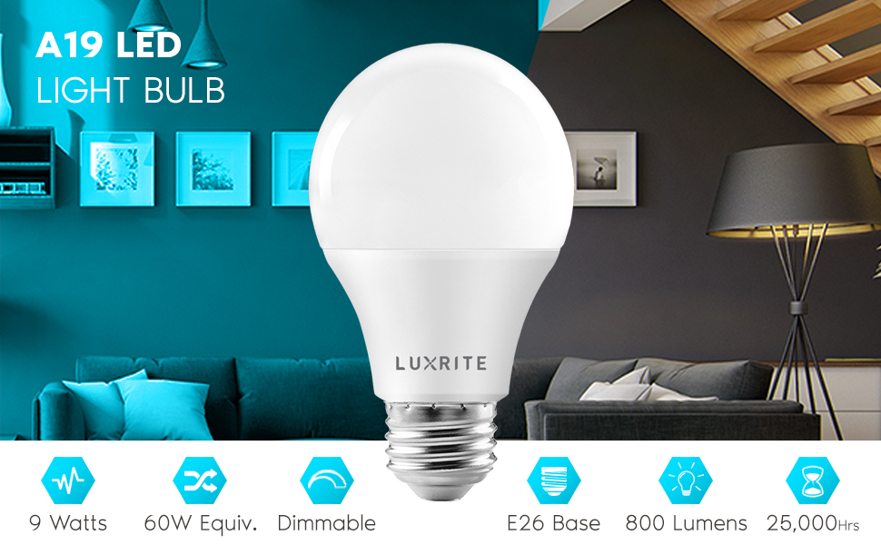 a19 led light bulb standard lamp e26 medium base enclosed fixture rated indoor outdoor 60w watt
