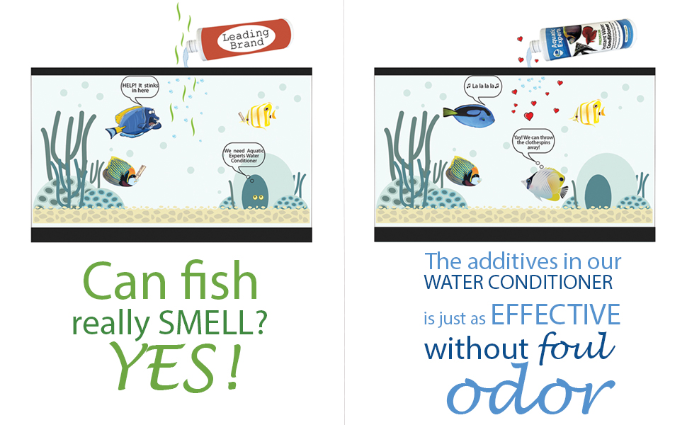 fish can smell