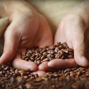 Cápsulas compatibles con máquinas nespresso