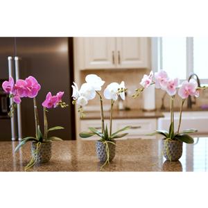 flores artificiales para decoracion, orquidias artificiales decorativas