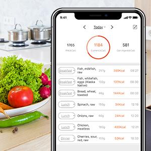 food scale , digital kitchen scale , kitchen scale