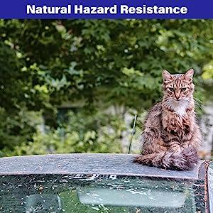 icarcover natural hazard resistance