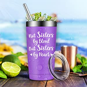 BIRGILT Not Sisters by Blood but Sisters by Heart