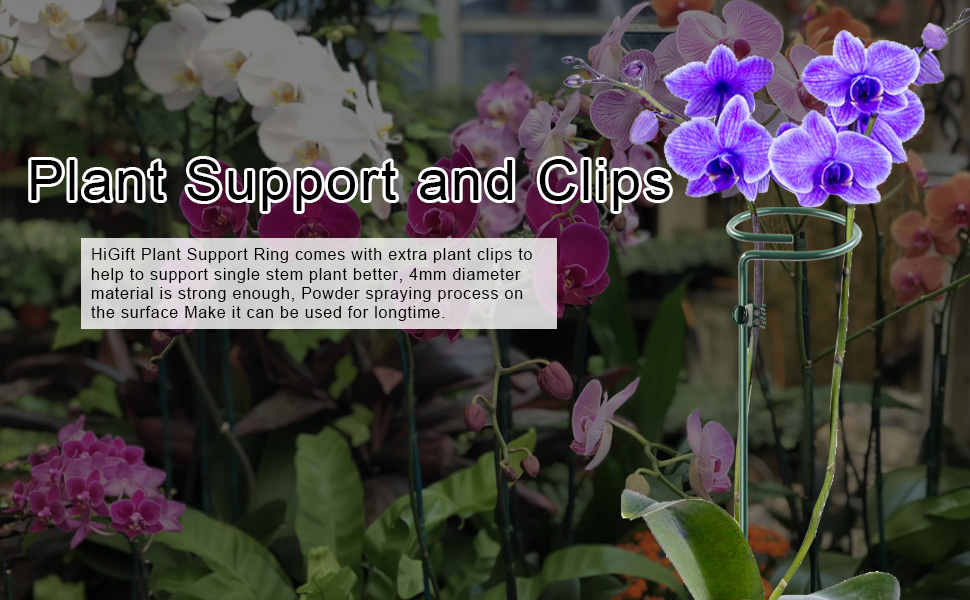 plant support and clips
