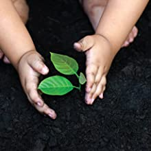 ecological cleaner toys baby