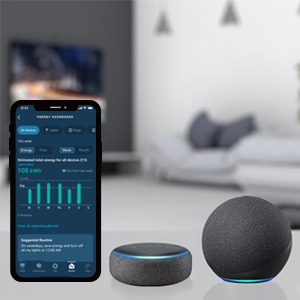 Alexa Energy Dashboard