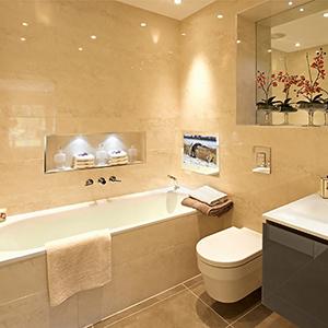 mirror bathroom TV