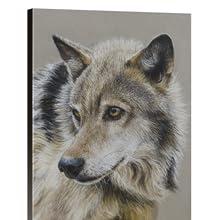 صورة من الذئب قماش التدريج