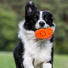 dog toys aggressive chewers indestructible