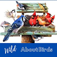 bird, feeders, seed, houses, baths
