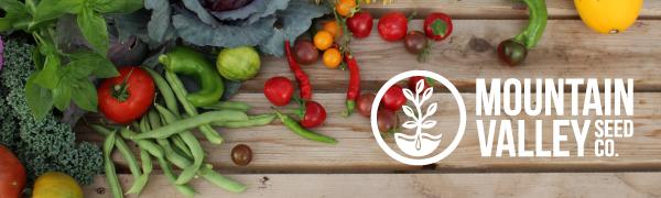 mountain valley seed company organic non gmo seeds