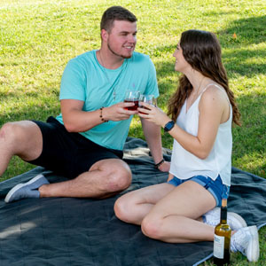 Brawntide Waterproof Blanket Park Picnic Drinks Festival Machine Washable