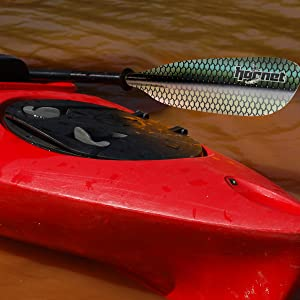 Green Scales Kayak