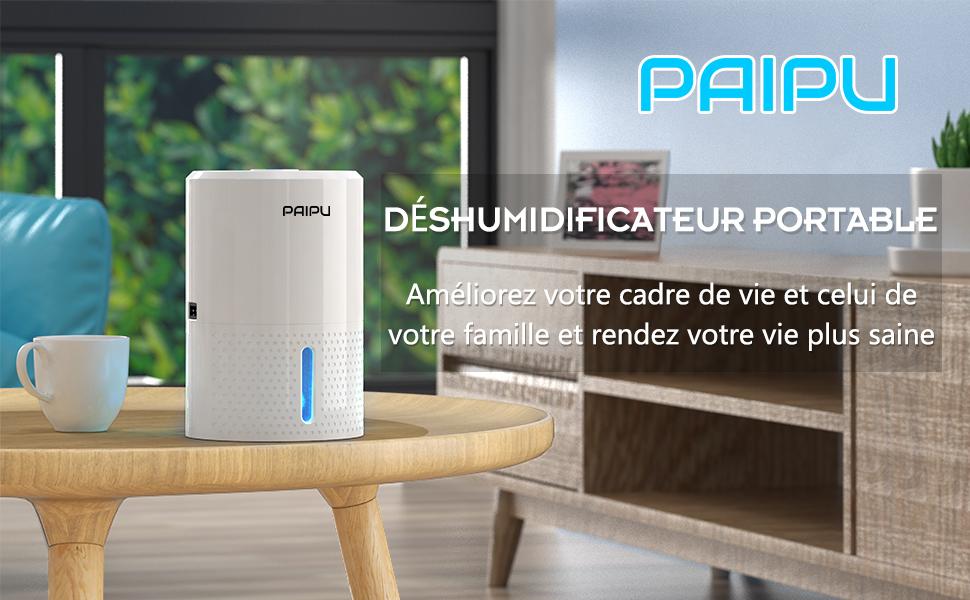 Déshumidificateur Electriques, 1000ml Mini Deshumidificateurs d'air Silencieux Absorbeur D'humidité