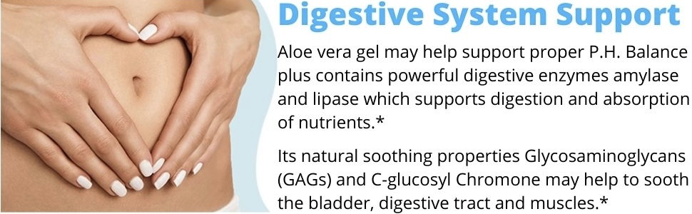 digestive supplement digestive enzymes supplements digestion aid relief support capsules pills