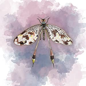 watercolor wall art print set of four girls bedroom wall art dragonfly dragonflies purple pink lilac