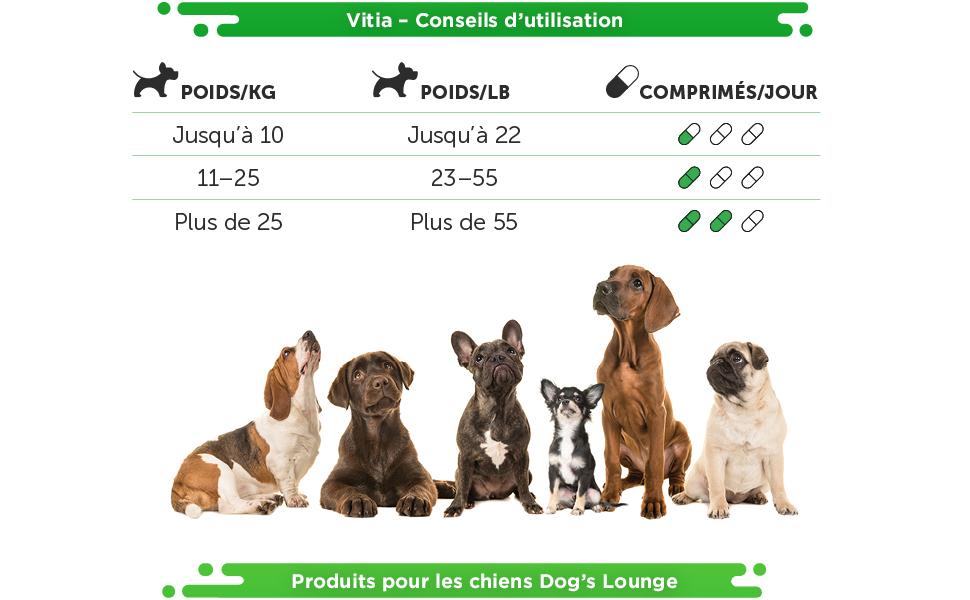Vitia chien multivitamines supplément naturel pelage brillant peau saine cérébrale vitalité vitamine