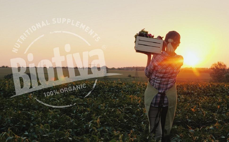 Biotiva Bio Nahrungsergänzung Superfood Tee Gewürze